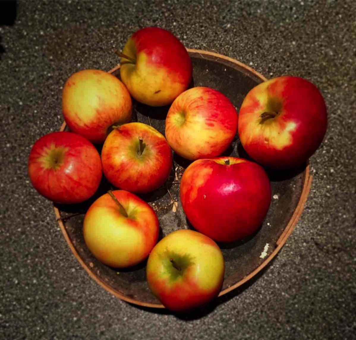 Neu rot-gelbe Äpfel liegen auf einer Tischplatte