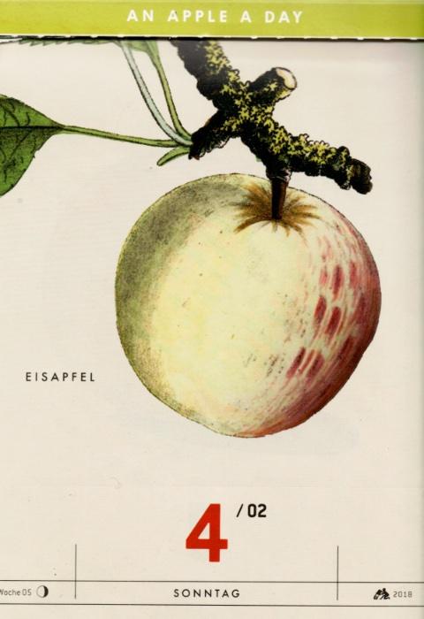 Historische Abbildung eines gelblich-rötlichen Apfels, der an einem Zweig hängt;