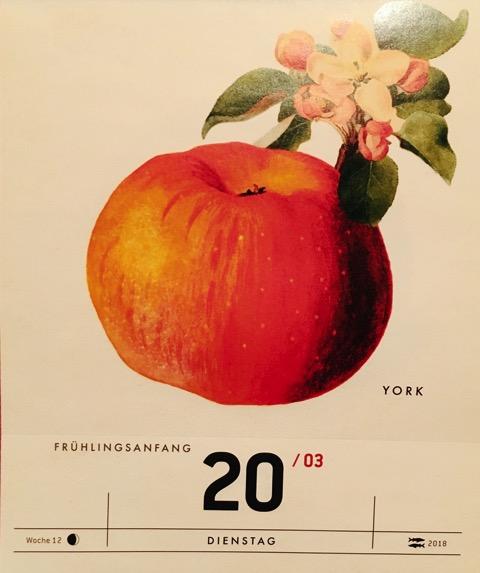 Kalenderblatt mit historischer Abbildung eines rötlichen Apfels und einer Blüte; @Verlag Hermann Schmidt