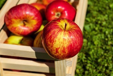 rote-gelbe Äpfel liegen auf einer Holzkiste