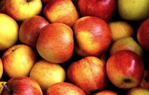 Ein haufen rotgelber Äpfel; CC, Pixabay