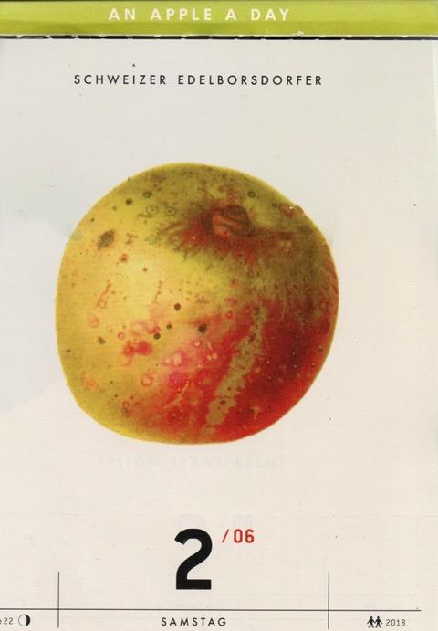 Kalenderblatt mit historischer Abbildung eines gelblich-rötlichen Apfels; Schweizer Edelborsdorfer; Verlag Hermann Schmidt