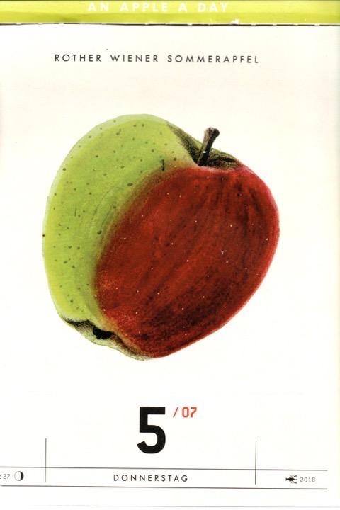 Ein Tageskalender mit einer Historische Abbildung eines rot-grünen Apfels