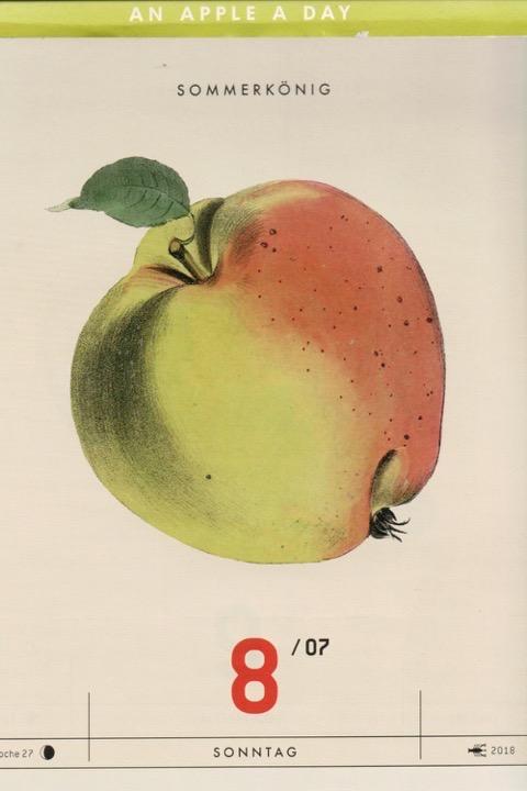 Historische Abbildung eines gelblich-rötlichen und eines aufgeschnittenen Apfels; Verlag Hermann Schmidt