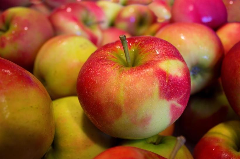 viele rotgrüne Äpfel