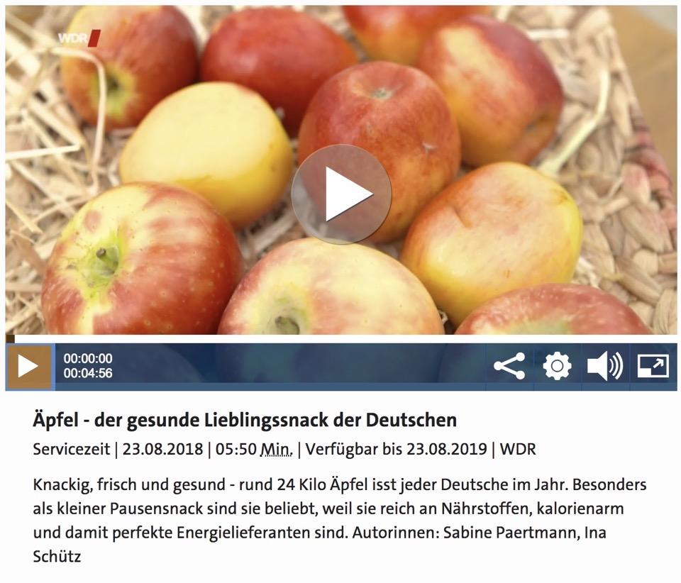 Screenshot WDR-Mediaplayer, Äpfel auf Stroh, darunter Informationen zum TV-Beitrag