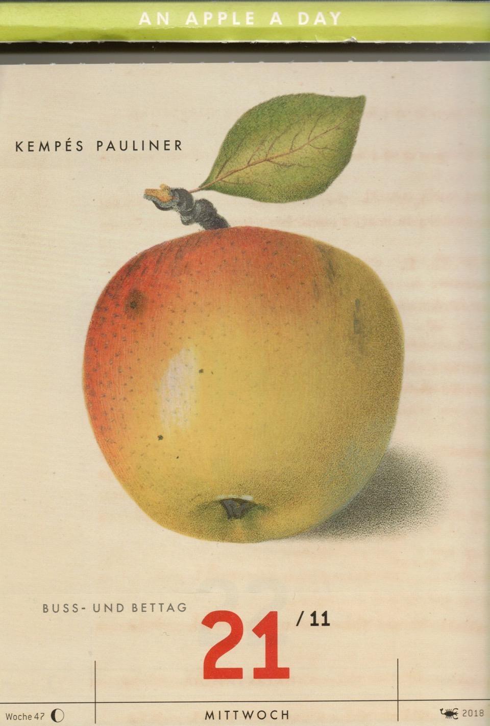 Kalenderblatt mit einer historischen Abbildung eines gelblich-rötlichen Apfels