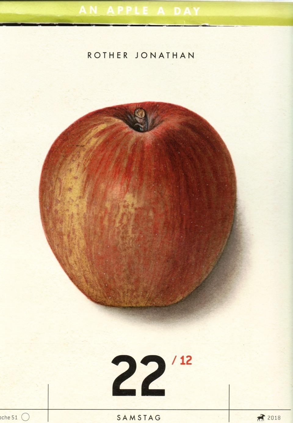 Kalender mit der hsitorischen Abbildung eines gelblich-roten Apfels; Verlag Hermann Schmidt