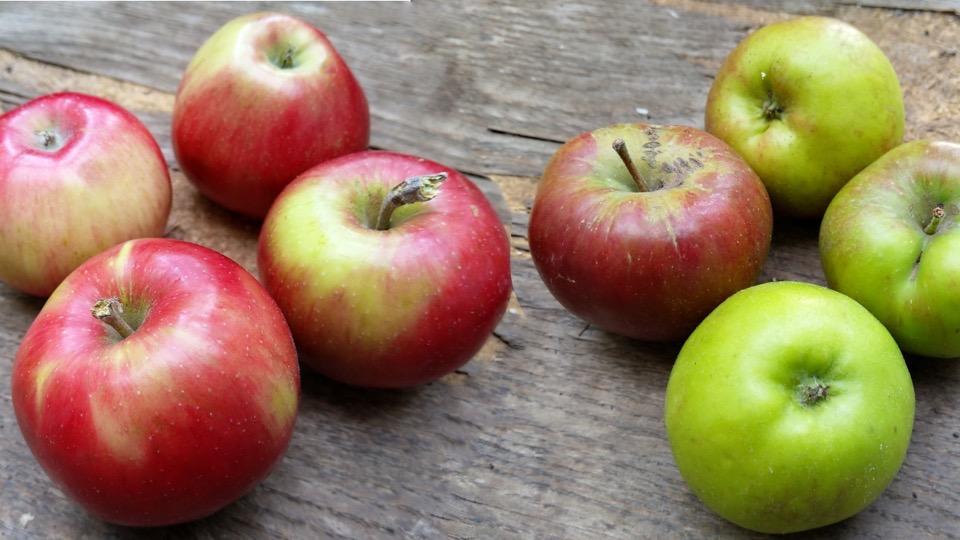rote und grüne Äpfel liegen auf einem Holztisch